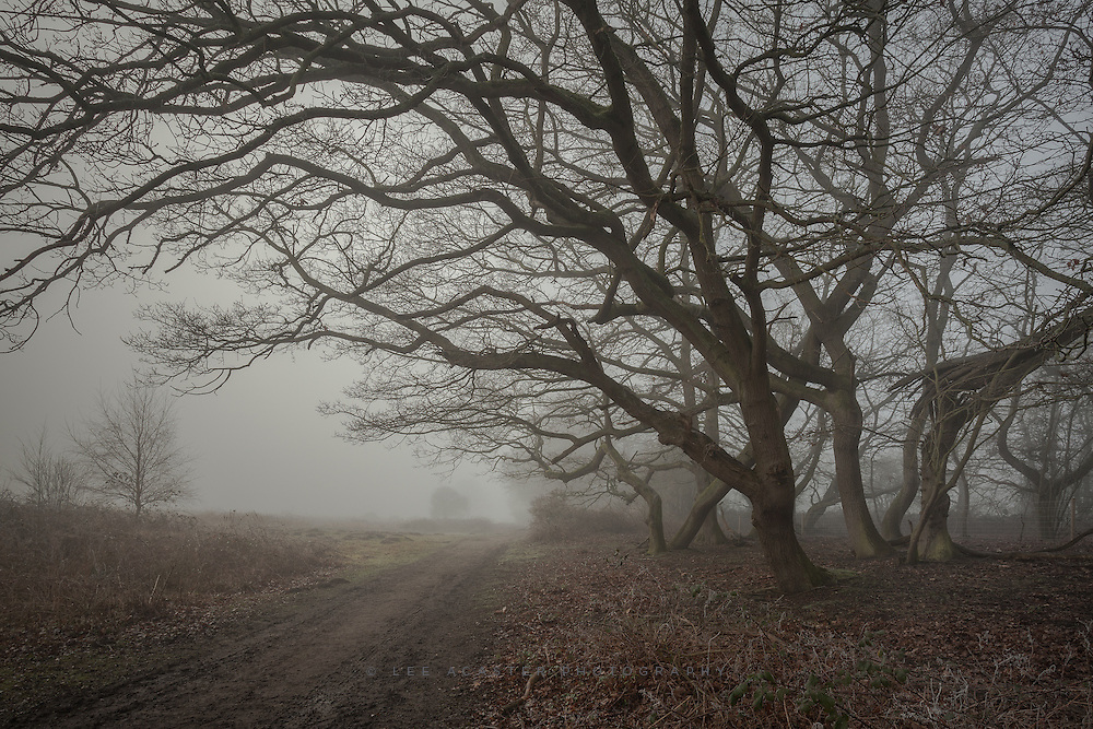 Just come across some images I didnt get around to processing from back in January, so some unseasonally bleak images to follow