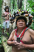 Chief Almir Narayamogo with iphone, another with GPS equipment in the Surui territory, primary rainforest interior.<br /><br />An Amazonian tribal chief Almir Narayamogo, leader of 1350 Surui Indians in Rondônia, near Cacaol, Brazil, with a $100,000 bounty on his head, is fighting for the survival of his people and their forest, and using the world's modern hi-tech tools; computers, smartphones, Google Earth and digital forestry surveillance. So far their fight has been very effective, leading to a most promising and novel result. In 2013, Almir Narayamogo, led his people to be the first and unique indigenous tribe in the world to manage their own REDD+ carbon project and sell carbon credits to the industrial world. By marketing the CO2 capacity of 250 000 hectares of their virgin forest, the forty year old Surui, has ensured the preservation, as well as a future of his community. <br /><br />In 2009, the four clans and 25 Surui villages voted in favour of a total moratorium on logging and the carbon credits project. <br /><br />They still face deforestation problems, such as illegal logging, and gold mining which causes pollution of their river systems