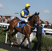 Jockey Oisin Murphy on Belle Dormant in the Parade Ring before the 4.20 race at Brighton Racecourse, Brighton & Hove, United Kingdom on 10 June 2015. Photo by Bennett Dean.