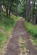 The trail to Daffodil Point at Burgoyne Bay Provincial Park on Salt Spring Island, British Columbia, Canada