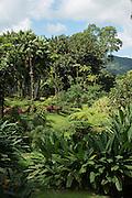 Domaine d'Emeraude, Morne Rouge, Martinique, France