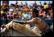Sakha warrior reenactor gallops a white horse past crowded stands at midsummer Ysyakh festival in eastern Siberia; Yakutsk, Russia