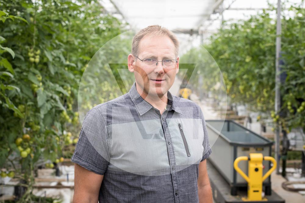 SCHWEIZ - NIEDERBIPP - Beat Bösiger, Geschäftsführer und Inhaber von Bösiger Gemüsenkulturen AG, im Tomatengewächshaus - 21. Juni 2019 © Raphael Hünerfauth - http://huenerfauth.ch