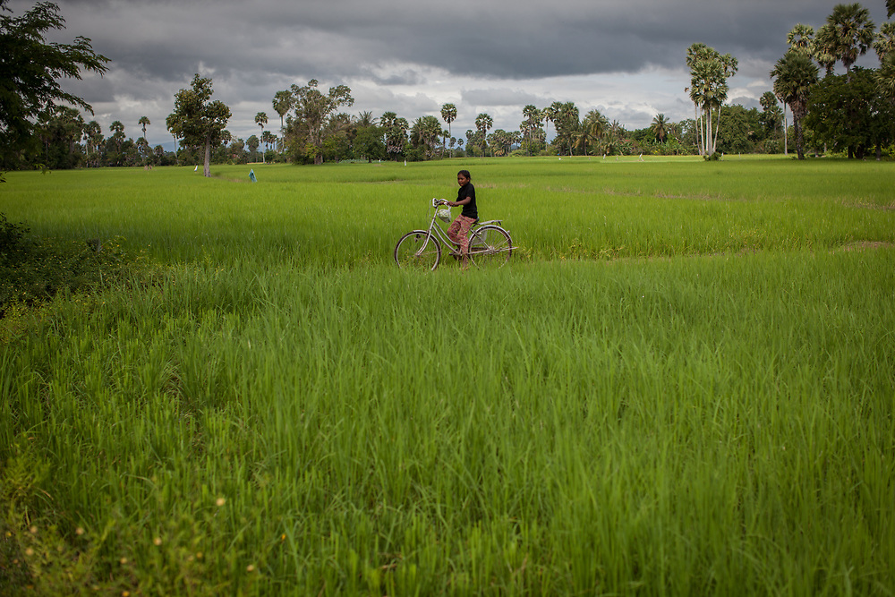 A girl cycles her bike between rice paddies in a rural area of Takéo province, Cambodia