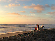 Woman reading book at sunset on the beach with her white German Setter.