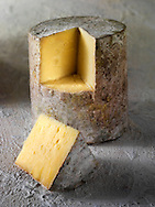 Traditional Farmhouse Cheddar cheese truckle, stock photos