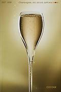 photographie de couverture du Catalogue vins de Cocogé. coupe de champagne sur fond doré.