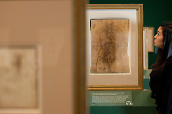 © Licensed to London News Pictures. 30/04/2012. LONDON, UK. A member of the gallery staff from The Queen's Gallery, looks at Leonardo da Vinci's 'The cardiovascular system and principle organs of a woman'.  A sketched in c.1509 it also contains what is suspected to be one of the artist's fingerprints. Featuring 87 pages of sketches from the artist's notebooks the exhibition, entitled 'Leonardo da Vinci: Anatomist', is the largest ever of his anatomical work and opens at The Queen's Gallery in London on Friday the 4th of May. Photo credit: Matt Cetti-Roberts/LNP