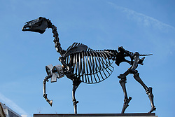 © Licensed to London News Pictures. 05/03/2015. LONDON, UK. Fourth plinth sculpture 'Gift Horse' by German artist Hans Haacke in Trafalgar Square, London is unveiled on Thursday, 5 March 2015. Photo credit : Tolga Akmen/LNP