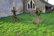 Family headstones in church graveyard decorated with holly for Christmas, Shottisham, Suffolk, England, UK