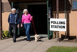 © Licensed to Alison Baskerville. 02/05/2013. Warwickshire, UK.  Pepe the dog watches his owners cast their vote in the local elections as members of the local community arrived this morning at the Castle Farm Leisure Centre in the historic town of Kenilworth.  The results are set to be scrutinised by the major parties as over 34 local authorities take part in todays elections.  Photo credit: Alison Baskerville/LNP...**PLEASE NOTE:  Consent has been gained from everyone featured in this set of images.**