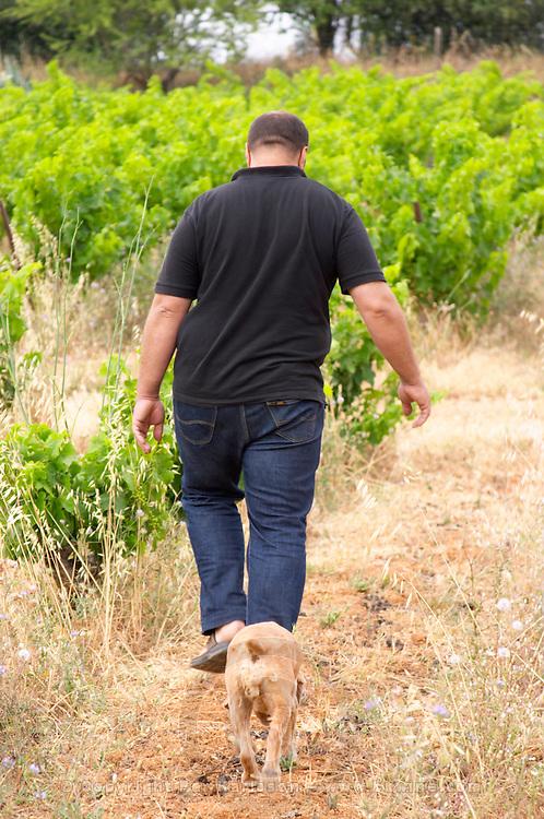 Pierre Quinonero Domaine de la Garance. Pezenas region. Languedoc. Owner winemaker. France. Europe. Vineyard. The Dog.