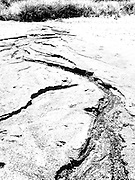 High contrast image of a rivulet's erosion of sand on a beach.