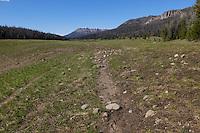 Brooks Lake near Togwotee Pass, Wyoming
