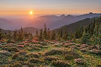 Sunset from Skyline Divide. Mount Baker Wilderness, North Cascades Washington