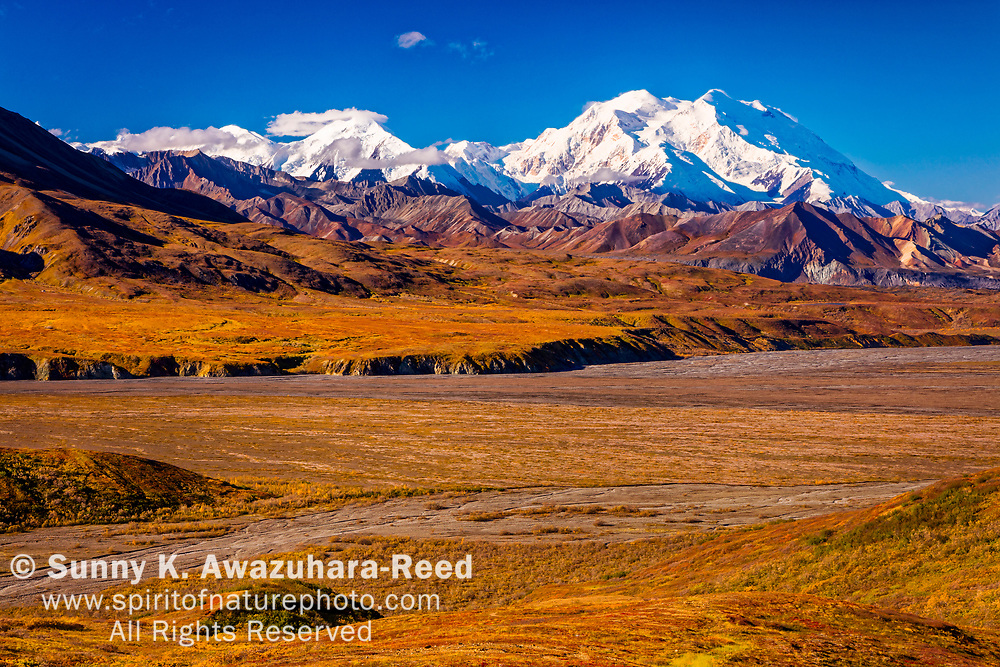View of Mount Denali (McKinley) and Mt. Eielson, from Eielson Visitor Center. Fall color tundra hill is in the foreground. Denali National Park & Preserve, Alaska, Autumn.