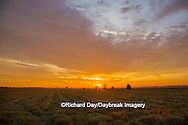 63893-02913 Sunrise at Prairie Ridge State Natural Area, Marion Co, IL