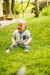 Laughing baby boy sitting in the meadow at garden