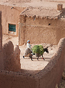 A woman guides a donkey along a street in the village of Dadès in the Skoura Oasis in Morocco