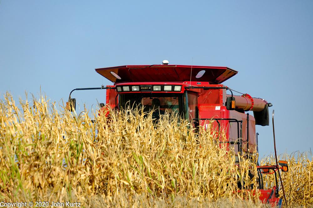 08 OCTOBER 2020 - MITCHELLVILLE, IOWA: A combine works in a cornfield near Mitchellville, Iowa. PHOTO BY JACK KURTZ
