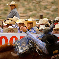 061313  Adron Gardner/Independent<br /> <br /> Cowboy hats are plentiful during the Gallup Lions Club Rodeo at Red Rock Park Saturday.