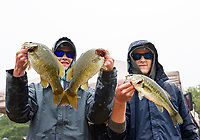 Weighing in their catch of wide and small mouth bass caught during the NHIAA State Bass Fishing Tournament on Lake Winnisquam.  (Karen Bobotas Photographer)