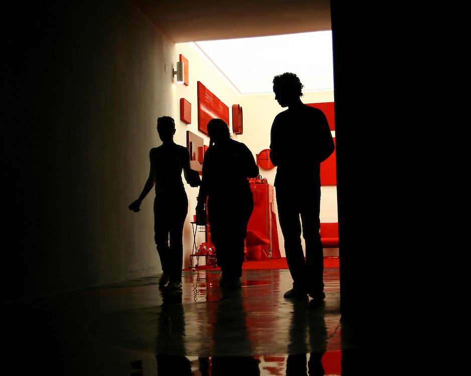 Brumadinho_MG, Brasil...Museu de Arte Contemporanea de Inhotim (CACI). Na Foto a obra Desvio para o vermelho I: Impregnacao, II: Entorno, III: Desvio de Cildo Meireles...The Inhotim Contemporary Art Museum (CACI). In this photo the art Desvio para o vermelho I: Impregnacao, II: Entorno, III: Desvio of Cildo Meireles...Foto: BRUNO MAGALHAES / NITRO.