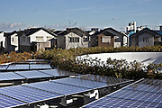 solar panels at ecological development project Japan Fujisawa Sustainable Smart Town Kanagawa