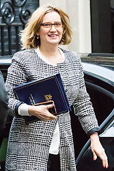 London, November 14 2017. Home Secretary Amber Rudd attends the UK cabinet meeting at Downing Street. © Paul Davey