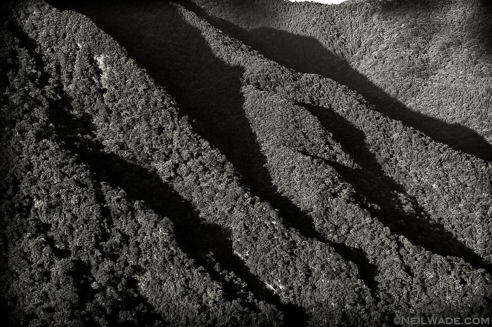 Black and White detail of some mountain ridges near Wulai, Taiwan.