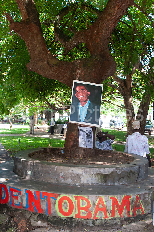 The Obama tree, where taxi drivers gather and take some shade on 6th December 2008 in Zanzibar, Tanzania. Zanzibar is a small island just off the coast of the Tanzanian mainland in the Indian Ocean. In part due to its name, Zanzibar is a travel destination of mystical reputation, known for its incredible sealife on its many reefs, the powder white coral sand beaches and the traditional cultivation of spices.