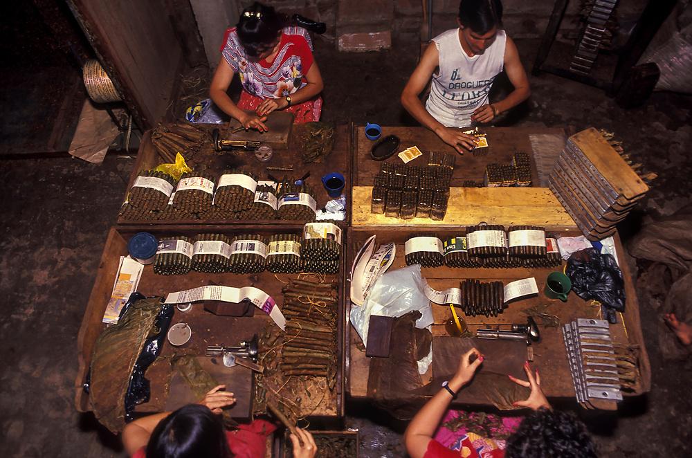 Rolling cigars,Bucaramanga,  Santander.