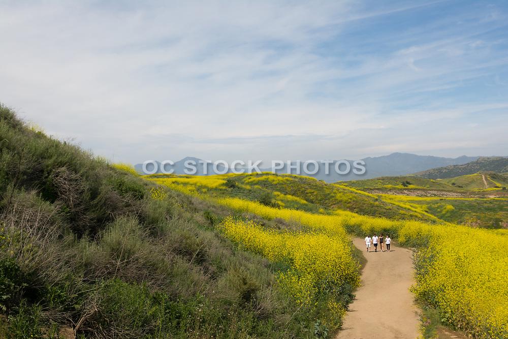 People Hiking Las Ramblas Trails In San Juan Capistrano