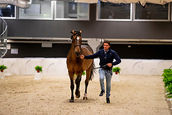 De Luca Lorenzo, ITA, Ensor de Litrange Lxii<br /> LONGINES FEI World Cup™ Finals Gothenburg 2019<br /> © Dirk Caremans<br /> 02/04/2019