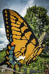 Lewis Ginter Botanical Gardens, Richmond, VA.  Installation of Lego Sculptures throughout the gaardens. Nature, stock photo