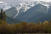 Grizzly Ridge, Willows, Genesee Valley Ranch, California Ranches, Snowy Mountains, Spring Snow, Sierra Nevada Mountains
