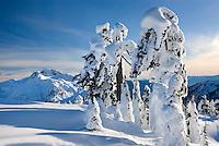 Mount Ann seen in winter from Kulshan Ridge, Heather Meadows Recreation Area North Cascades Washington USA