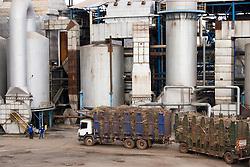 28.05.2007, Clementina/SP. Treminhoes aguardam para descarregar cana na usina Clealco no oeste paulista, produtora de açúcar e álcool