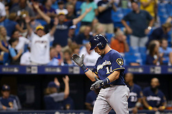August 5, 2017 - St. Petersburg, Florida, U.S. - WILL VRAGOVIC   |   Times.Milwaukee Brewers left fielder Hernan Perez (14) crosses the plate on his solo home run in the ninth inning of the game between the Milwaukee Brewers and the Tampa Bay Rays at Tropicana Field in St. Petersburg, Fla. on Saturday, August 5, 2017. (Credit Image: © Will Vragovic/Tampa Bay Times via ZUMA Wire)