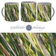 Coffee Mug Showcase  57 - Shop here: https://2-julie-weber.pixels.com/products/wind-tossed-julie-weber-coffee-mug.html