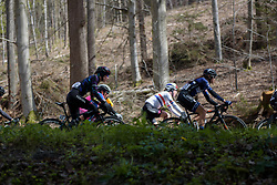 Alena Amialiusik through the trees at the Liege-Bastogne-Liege Femmes - a 135.5 km road race between Bastogne and Ans on April 23 2017 in Liège, Belgium.