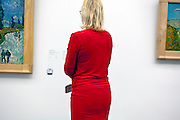 person looking at a Van Gogh painting at Kruller-Muller museum in Holland