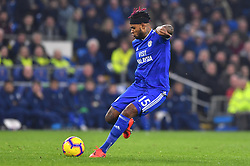 Cardiff City's Leandro Bacuna shoots towards goal during the Premier League match at the Cardiff City Stadium.