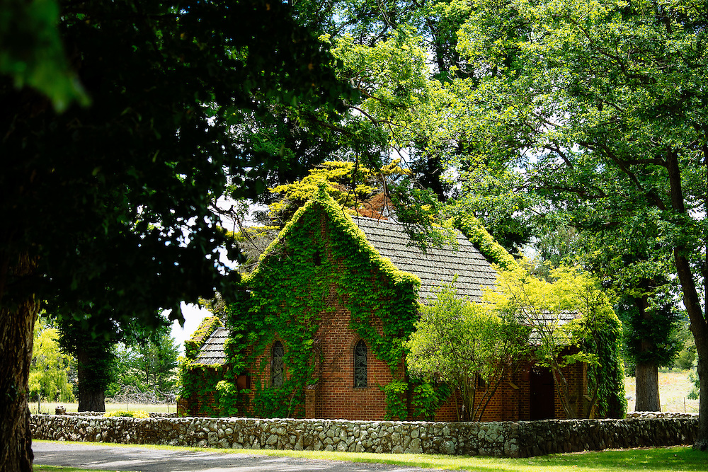 Gostwyck Chapel, constucted in 1921 surrounded by Elm trees and covered in Viginia Creeper. Also known as All Saints Anglican Church, which is on private property (Gostwyck Station) next to Salisbury Waters. Gostwyck, New South Wales.