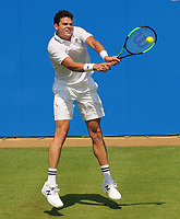 Tennis - 2017 Aegon Championships [Queen's Club Championship] - Day Two, Monday<br /> <br /> Men's Singles, Round of 32<br /> Thanasi Kokkinakis [AUS] vs. Milos Raonic [Canada]<br /> <br /> Milos Raonic, on Centre Court.<br /> <br /> COLORSPORT/ANDREW COWIE