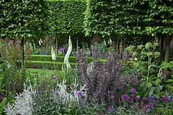 The Husqvarna Garden. RHS Chelsea Flower Show 2016, Designer: Charlie Albone