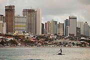 Natal_RN, Brasil...Na foto, a praia de Ponta Negra em Natal, Rio Grande do Norte...Ponta Negra beach in Natal, Rio Grande do Norte...Foto: LEO DRUMOND / NITRO