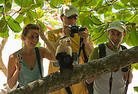 Tourists get a close look at a white-faced capuchin, Cebus capucinus, in Manuel Antonio National Park, Costa Rica