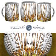 Coffee Mug Showcase   78 - Shop here: https://2-julie-weber.pixels.com/products/cattail-ball-julie-weber-coffee-mug.html