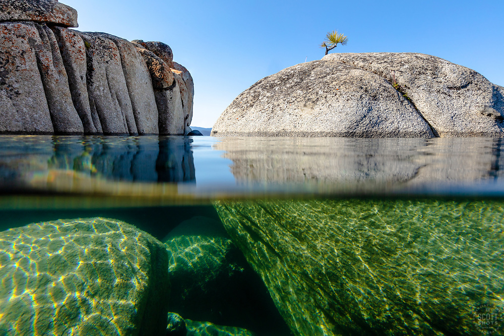 """""""Bonsai Tree on Lake Tahoe Boulder 6"""" - Photograph of a bonsai like tree on a boulder near State Line Point in Crystal Bay, Lake Tahoe. Over-under photo where half the lens is under water, shot from a kayak in the morning."""